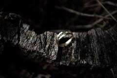 anneaux de mariage ensemble image libre de droits