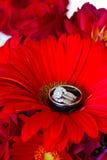 Anneaux de mariage et fleurs rouges Photo libre de droits