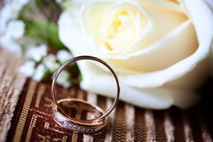 Anneaux de mariage près de la fleur Image stock
