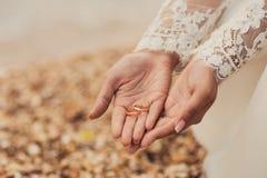 Anneaux de mariage sur des mains de jeune mariée photographie stock libre de droits
