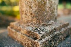 Anneaux de mariage sur l'architecture en pierre antique Bijoux de mariage Photographie stock