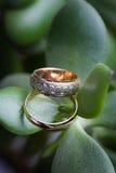 Anneaux de mariage sur la feuille verte Images stock