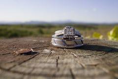 Anneaux de mariage sur un identifiez-vous en bois un vignoble images libres de droits