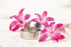Anneaux de mariage titaniques Image stock