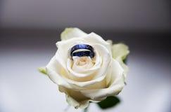 Anneaux de mariage titaniques Photos libres de droits