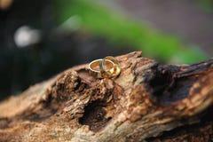 Anneaux de mariages comme symbole de la vie heureuse sur un tronçon d'arbre photographie stock