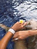 Anneaux et bracelet argentés de port de modèle de main de bijoux tenant une fleur photographie stock