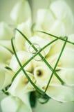 Anneaux et fleurs Images libres de droits
