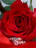 Anneaux et rose de rouge Photo stock