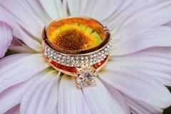 anneaux sur l'amour Valentine& x27 de marguerite blanche ; gerbera de jour de s et or de mariage Photos libres de droits