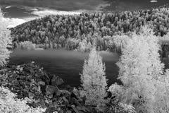 Annebbi al fiume di Katun, la riserva naturale di Biospheric dello stato di Altai, Russ Fotografie Stock