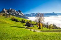 Annebbi circondare più lordo e Kleiner Mythen in alpi svizzere Immagini Stock