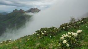 Annebbi sopra i picchi delle montagne di Caucaso video d archivio