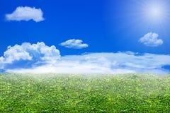 Annebbi sulla foglia e sui coluds verdi sul chiaro cielo blu Immagini Stock