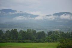 Annebbia sopra la montagna dopo una pioggia Serbia dell'estate fotografie stock libere da diritti