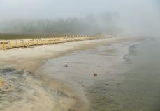 Annebbiato in spiaggia Immagine Stock