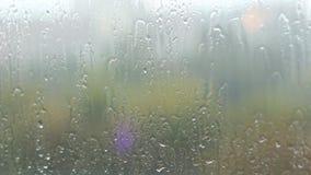 Annebbiato su vetro con molte gocce video d archivio