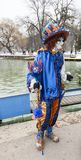 Disguised Person - Annecy Venetian Carnival 2013. Annecy, France, February 23, 2013: Image of a disguised person posing in Annecy, France, during a Venetian Royalty Free Stock Image