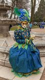 Disguised Person - Annecy Venetian Carnival 2014 stock images