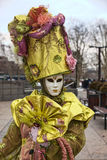 Retrato de una persona disfrazada Foto de archivo