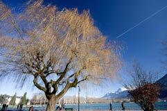ANNECY, FRANCIA 25 dicembre 2011: Vista del lago annecy con grande tre Fotografie Stock Libere da Diritti