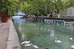Annecy kanal du vassé arkivbild