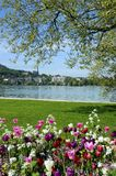 Annecy lake, flowers and city, Savoy, France stock photo