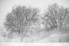Annecy sneeuw royalty-vrije stock foto's