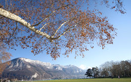 Annecy View, France. Stock Images