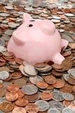 Annegamento della Banca Piggy Fotografia Stock Libera da Diritti