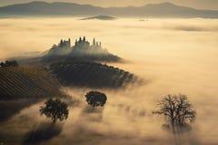 Annegato nella nebbia Fotografia Stock