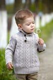 2 anni del neonato con il dente di leone Fotografia Stock