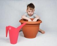 4 anni del ragazzo che pianta i semi Fotografie Stock Libere da Diritti