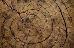 Anni di legno fotografia stock