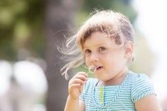 3 anni di neonata contro estate Fotografie Stock Libere da Diritti