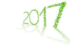 2017 anni fatti dal bello isolato fresco delle foglie verdi su briciolo Fotografia Stock Libera da Diritti