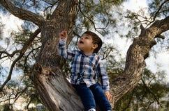 2 anni svegli del ragazzo vestito in camicia che si siede sull'albero, sporco intorno alla bocca fotografia stock