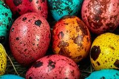 Annidi con le uova di Pasqua colorate a casa sul giorno di Pasqua celebrazione Fotografia Stock Libera da Diritti