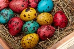Annidi con le uova di Pasqua colorate a casa sul giorno di Pasqua celebrazione Immagine Stock Libera da Diritti