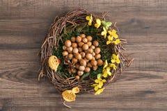 Annidi in pieno delle nocciole e badian in muschio con i fiori gialli ed elementi di decorazione immagini stock libere da diritti