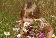 Annie Meadow e. Little girl in meadow smelling flowers Royalty Free Stock Photos