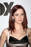 Annie Wersching Royalty Free Stock Images