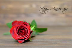 Anniversary card with red rose. On wooden background Stock Image