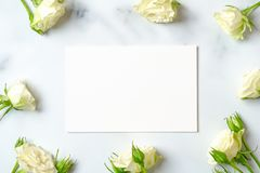 Anniversary congratulation flower background. White rose frame and blank paper card on marble background, flat lay composition,. Top view, overhead royalty free stock photos