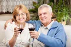Anniversary. Happy senior couple toasting their anniversary with red wine at home ambient royalty free stock image