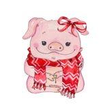 Anno cinese del maiale fotografia stock