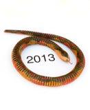 Anno cinese del serpente, 2013 Immagini Stock