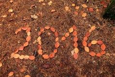 Anno 2016 dalle foglie Immagine Stock