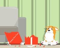 Anno del cane Immagine Stock