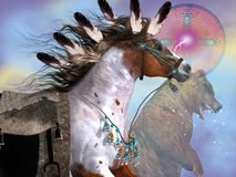 Anno del cavallo dell'orso Fotografia Stock